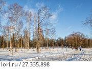 Купить «People walking in the park on a sunny winter day», фото № 27335898, снято 21 января 2017 г. (c) Юлия Бабкина / Фотобанк Лори