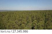 Купить «Полет над лесом к реке», видеоролик № 27345986, снято 13 июня 2017 г. (c) Алексей Кокорин / Фотобанк Лори
