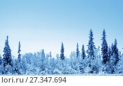 Купить «winter forest», фото № 27347694, снято 21 ноября 2017 г. (c) Iakov Kalinin / Фотобанк Лори