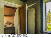 Купить «White wagtail (Motacilla alba alba) nesting in cupboard in house, Lofoten, Norway, June. Highly commended in the Urban Wildlife Category of the Wildlife...», фото № 27350482, снято 18 августа 2018 г. (c) Nature Picture Library / Фотобанк Лори