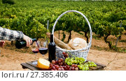 Купить «woman pouring wine into glass. Red wine, cheese, bread and grapes on wooden table on background with green vineyard», видеоролик № 27385406, снято 6 октября 2017 г. (c) Яков Филимонов / Фотобанк Лори