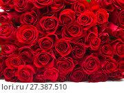 Купить «Background of a lot of beautiful red roses», фото № 27387510, снято 6 февраля 2017 г. (c) Юлия Бабкина / Фотобанк Лори