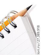 Купить «Блокнот с простым карандашом на белом фоне», фото № 27389918, снято 21 июня 2010 г. (c) Александр Гаценко / Фотобанк Лори