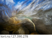 Купить «Underwater view of the Sense river, Cantons of Fribourg and Bern, Switzerland. October 2011. Photographed for The Freshwater Project», фото № 27390278, снято 23 марта 2018 г. (c) Nature Picture Library / Фотобанк Лори