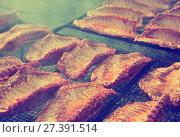 Купить «Meat ribs of pig roasting on barbecue», фото № 27391514, снято 30 апреля 2017 г. (c) Яков Филимонов / Фотобанк Лори