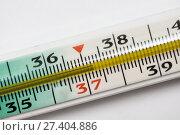 Купить «Медицинский градусник крупным планом. Показание температуры — 37,3.», эксклюзивное фото № 27404886, снято 15 января 2018 г. (c) Игорь Низов / Фотобанк Лори