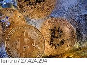 Купить «Замороженные золотые монеты криптовалюты Биткоин», фото № 27424294, снято 20 января 2018 г. (c) Николай Винокуров / Фотобанк Лори