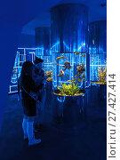 Купить «Посетители осматривают тропических обитателей в цилиндрических аквариумах. Дельфинарий  «Дельфиния», город Новосибирск, улица Жуковского, 100/4», фото № 27427414, снято 13 апреля 2017 г. (c) Григорий Писоцкий / Фотобанк Лори