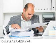Portrait of male worker in the office sitting. Стоковое фото, фотограф Яков Филимонов / Фотобанк Лори