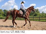 Купить «Молодая девушка на лошади. Конный спорт», эксклюзивное фото № 27468142, снято 17 августа 2013 г. (c) Юрий Морозов / Фотобанк Лори