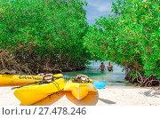 Купить «Kayaks at the Mangel Halto beach in Aruba», фото № 27478246, снято 19 ноября 2018 г. (c) age Fotostock / Фотобанк Лори