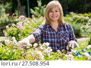 Купить «mature woman gardening», фото № 27508954, снято 17 июня 2016 г. (c) Яков Филимонов / Фотобанк Лори