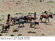 Купить «Morocco, Moroccan, Caravan, North Africa, Africa, African», фото № 27529570, снято 24 января 2019 г. (c) age Fotostock / Фотобанк Лори