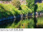 Купить «Small summer lake surface with green reflections», фото № 27535834, снято 30 июля 2017 г. (c) Юрий Брыкайло / Фотобанк Лори