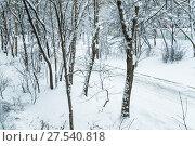 Купить «Засыпанная снегом дорога. Последствия сильного снегопада в Москве», фото № 27540818, снято 31 января 2018 г. (c) Алёшина Оксана / Фотобанк Лори