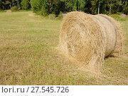 Купить «Harvesting. Bale of hay in autumn. Aland Islands, Finland», фото № 27545726, снято 21 июля 2013 г. (c) Валерия Попова / Фотобанк Лори