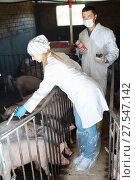 Купить «Veterinarians holding syringes and bottles», фото № 27547142, снято 21 октября 2018 г. (c) Яков Филимонов / Фотобанк Лори