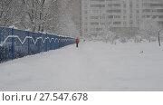 Купить «Woman with a dog go along fence in snowstorm in Moscow, Russia», видеоролик № 27547678, снято 4 февраля 2018 г. (c) Володина Ольга / Фотобанк Лори
