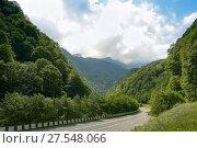 Купить «Алагирское ущелье. Республика Северная Осетия - Алания», фото № 27548066, снято 16 июля 2017 г. (c) Ирина Носова / Фотобанк Лори