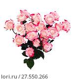 Купить «Flower pink roses», фото № 27550266, снято 8 марта 2016 г. (c) ElenArt / Фотобанк Лори