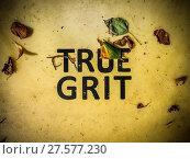 Купить «True Grit Sign», фото № 27577230, снято 24 июля 2019 г. (c) easy Fotostock / Фотобанк Лори