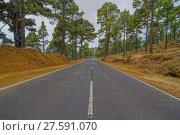 Купить «nature landscape scenic long road», фото № 27591070, снято 22 февраля 2019 г. (c) PantherMedia / Фотобанк Лори