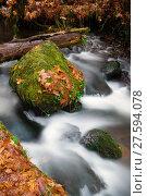 Купить «Fall Autumn Leaves Forest Stream Bubbling Brook Mossy River», фото № 27594078, снято 18 января 2019 г. (c) PantherMedia / Фотобанк Лори