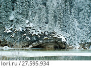 Wooded limestone cliff on the shore of a frozen winter river in cloudy weather. Стоковое фото, фотограф Евгений Харитонов / Фотобанк Лори
