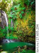 Купить «Jungle waterfall in northern Madagascar», фото № 27605294, снято 27 марта 2019 г. (c) easy Fotostock / Фотобанк Лори