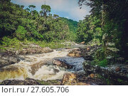 River flowing through Madagascar jungle. Стоковое фото, фотограф Zoonar/Pawel Opaska / easy Fotostock / Фотобанк Лори