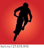 Купить «Mountain biker», иллюстрация № 27615910 (c) PantherMedia / Фотобанк Лори