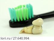 Купить «teeth dental toothbrush bit dens», фото № 27640994, снято 27 марта 2019 г. (c) PantherMedia / Фотобанк Лори