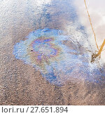 Купить «iridescent film of engine oil on asphalt pavement», фото № 27651894, снято 27 мая 2019 г. (c) PantherMedia / Фотобанк Лори