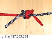 Купить «knotted together», фото № 27655354, снято 19 июня 2019 г. (c) PantherMedia / Фотобанк Лори