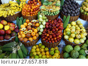 Купить «business architecture work job vegetable», фото № 27657818, снято 26 марта 2019 г. (c) PantherMedia / Фотобанк Лори