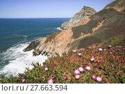 Купить «Devil's Slide sheer cliffs, coastal promontory, San Mateo County, California», фото № 27663594, снято 22 августа 2018 г. (c) PantherMedia / Фотобанк Лори