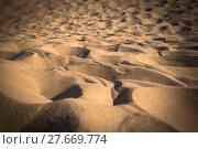 Купить «dune du pilat at 114 metres the highest sand dune in europe near arcachon gironde aquitaine france», фото № 27669774, снято 18 июля 2019 г. (c) PantherMedia / Фотобанк Лори