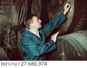 Купить «Man checking ageing barrel process», фото № 27686974, снято 22 сентября 2016 г. (c) Яков Филимонов / Фотобанк Лори