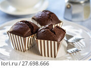 Купить «Homemade Chocolate cupcakes», фото № 27698666, снято 26 мая 2018 г. (c) PantherMedia / Фотобанк Лори