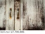 Купить «Old painted door with handles», фото № 27700886, снято 22 апреля 2019 г. (c) PantherMedia / Фотобанк Лори