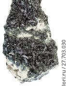 Купить «black green crystals of Hornblende on Amphibole», фото № 27703030, снято 10 июля 2020 г. (c) PantherMedia / Фотобанк Лори