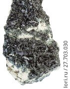 Купить «black green crystals of Hornblende on Amphibole», фото № 27703030, снято 20 октября 2019 г. (c) PantherMedia / Фотобанк Лори