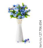 Купить «Forget me not flowers in vase», фото № 27706654, снято 23 января 2019 г. (c) PantherMedia / Фотобанк Лори