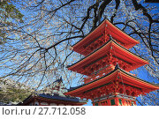 Купить «Kyoto, Japan at Kiyomizu-dera Temple during the fall», фото № 27712058, снято 19 июля 2019 г. (c) PantherMedia / Фотобанк Лори