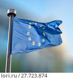 Купить «blue flag with Bitcoin Currency Symbol», фото № 27723874, снято 16 мая 2012 г. (c) Ярослав Данильченко / Фотобанк Лори