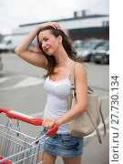 Купить «Beautiful young woman shopping in a grocery store/supermarket, putting the groceries she bought in her car (color toned image)», фото № 27730134, снято 17 июня 2019 г. (c) PantherMedia / Фотобанк Лори