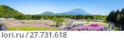Купить «Fuji with the field of pink moss at Shibazakura festival, Yamanashi, Japan», фото № 27731618, снято 17 июля 2019 г. (c) PantherMedia / Фотобанк Лори