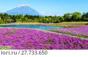 Купить «Fuji with the field of pink moss at Shibazakura festival, Yamanashi, Japan», фото № 27733650, снято 17 июля 2019 г. (c) PantherMedia / Фотобанк Лори