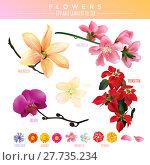 Купить «Flowers Editable Gradient Vector», иллюстрация № 27735234 (c) PantherMedia / Фотобанк Лори