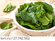 Купить «Fresh spinach leaves.», фото № 27742562, снято 14 декабря 2018 г. (c) PantherMedia / Фотобанк Лори